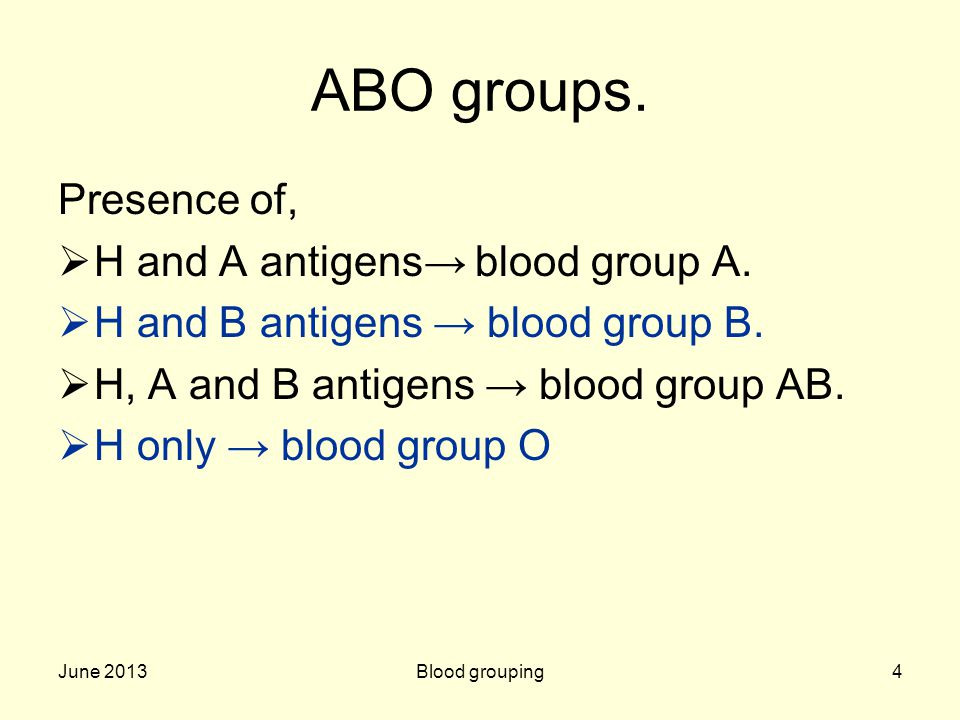 ABO groups. Presence of, H and A antigens→ blood group A.