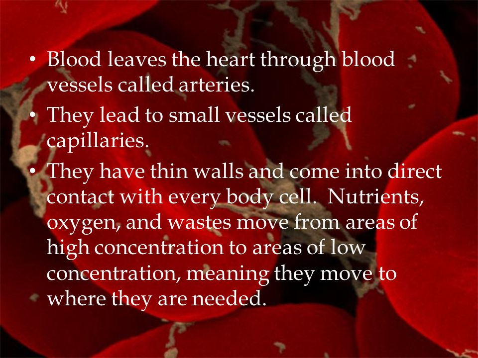 Blood leaves the heart through blood vessels called arteries.