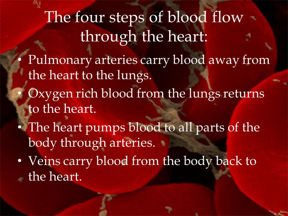 The four steps of blood flow through the heart: