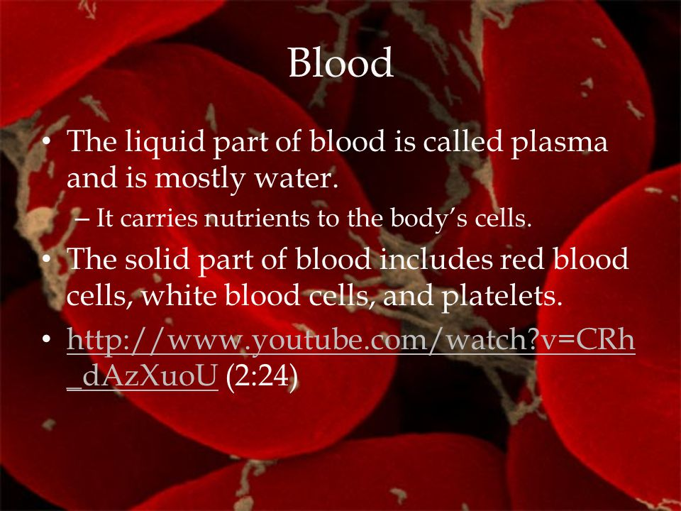 Blood The liquid part of blood is called plasma and is mostly water.