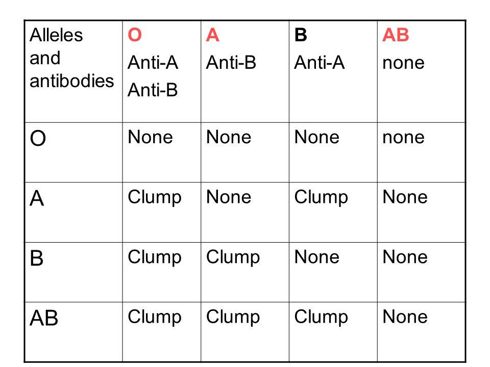 Alleles and antibodies