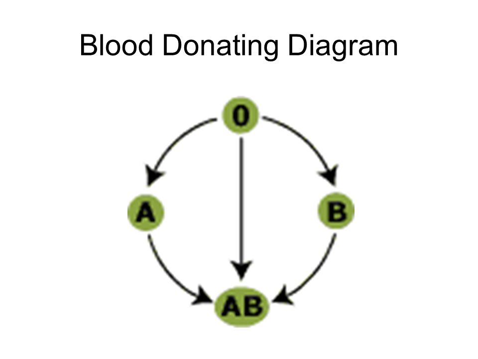Blood Donating Diagram
