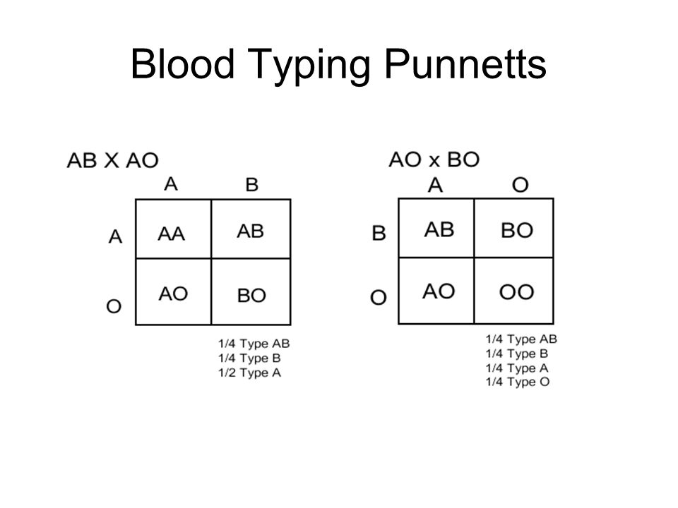 Blood Typing Punnetts