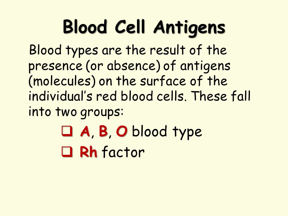 Blood Cell Antigens A, B, O blood type Rh factor
