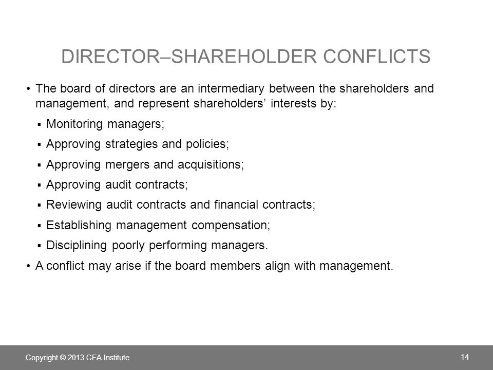 Director–shareholder conflicts