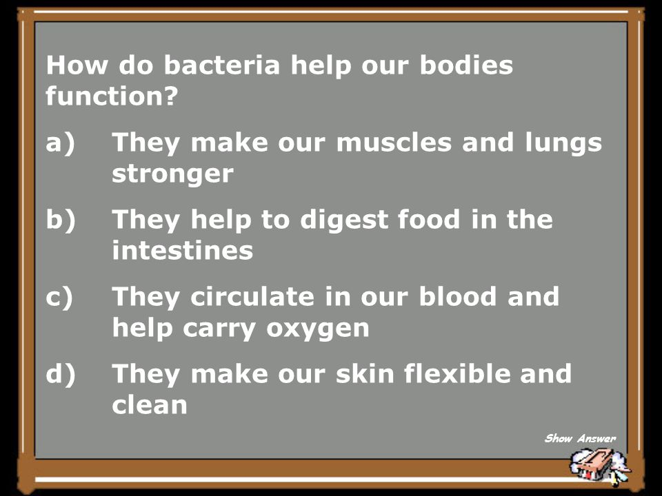 How do bacteria help our bodies function