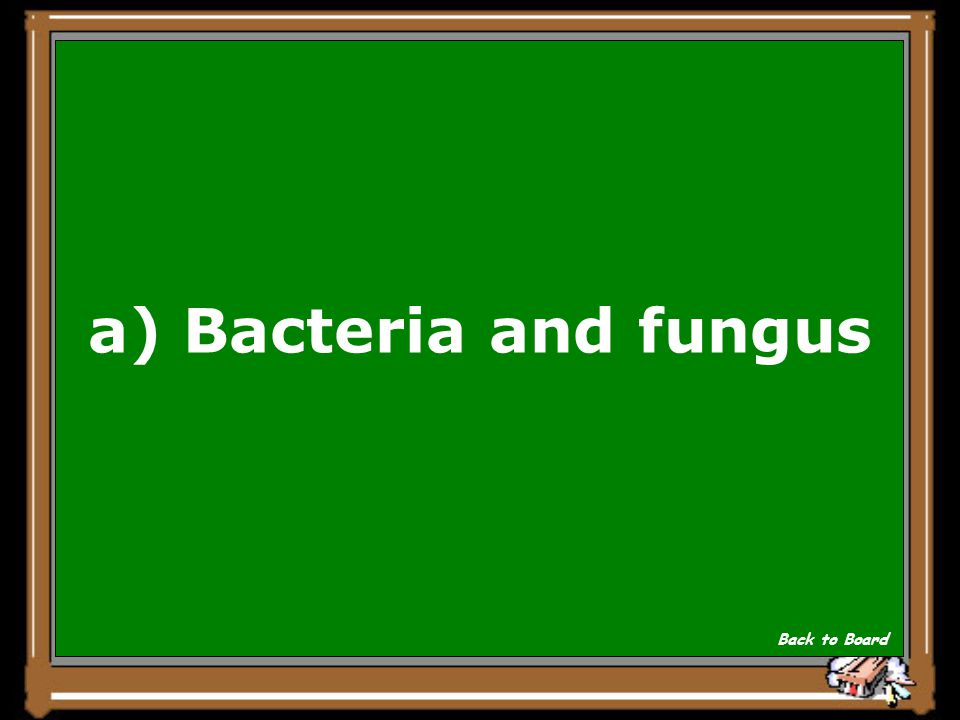 a) Bacteria and fungus Back to Board