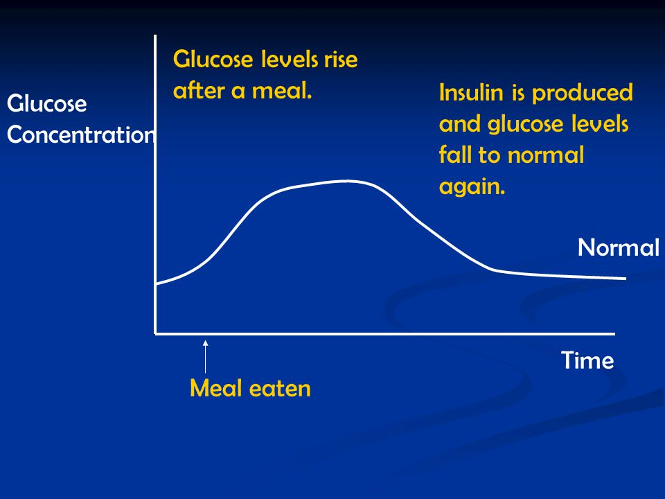 Glucose levels rise after a meal.