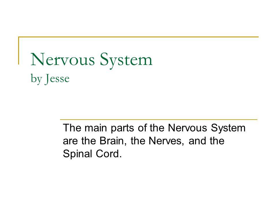 Nervous System by Jesse