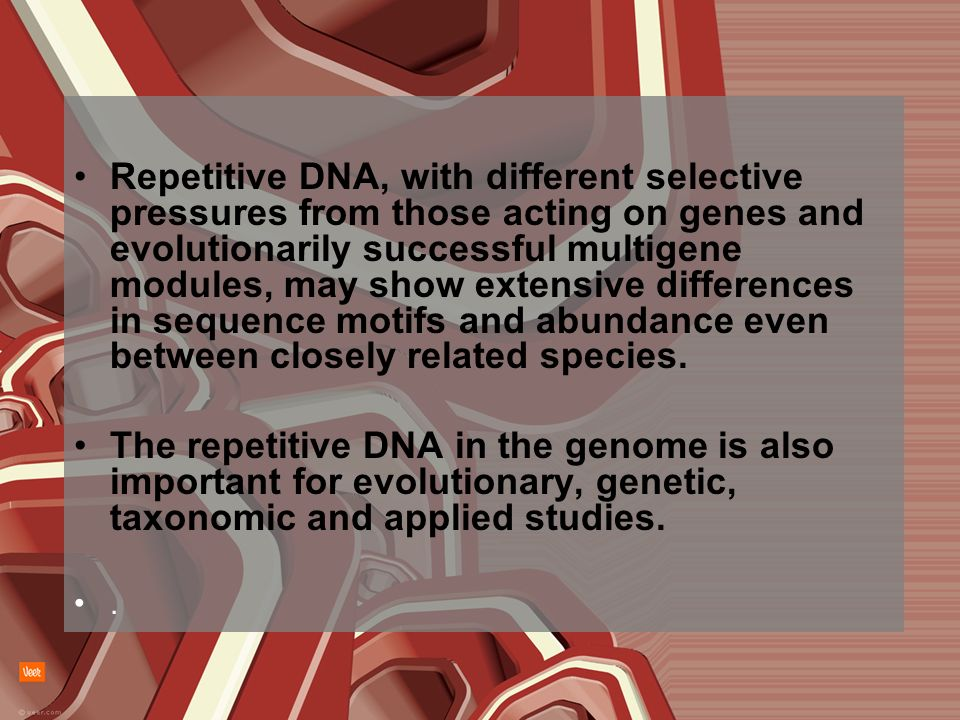 Repetitive DNA, with different selective pressures from those acting on genes and evolutionarily successful multigene modules, may show extensive differences in sequence motifs and abundance even between closely related species.