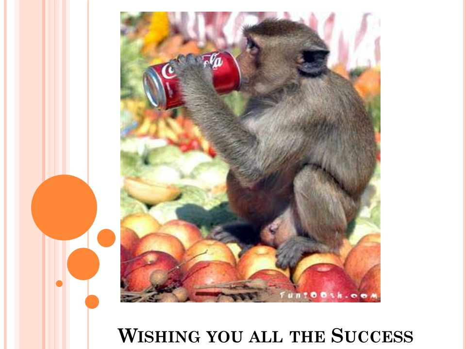 Wishing you all the Success