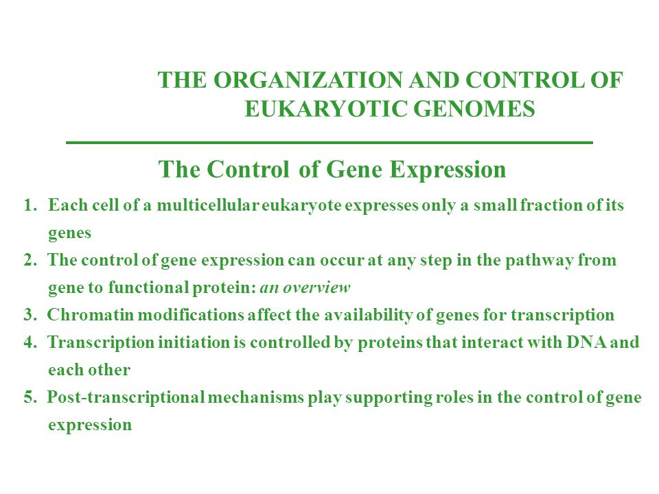 The Control of Gene Expression
