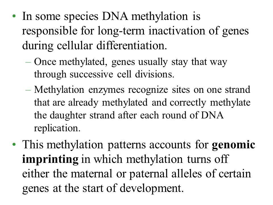 In some species DNA methylation is responsible for long-term inactivation of genes during cellular differentiation.