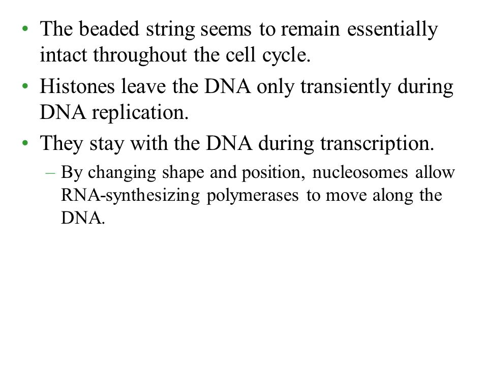 Histones leave the DNA only transiently during DNA replication.