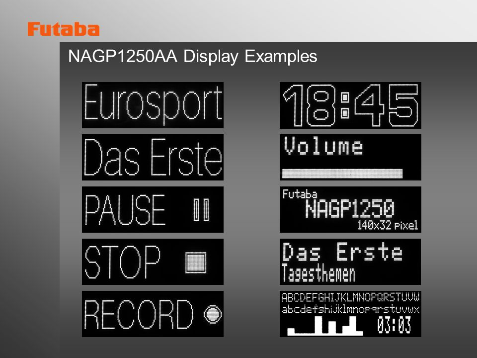 NAGP1250AA Display Examples