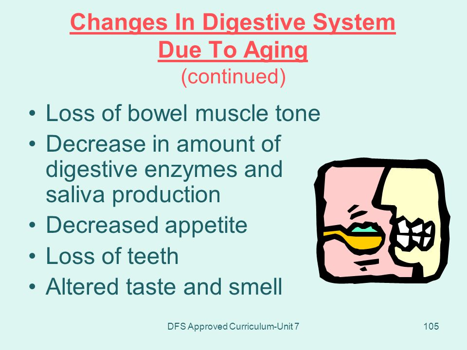 Changes In Digestive System Due To Aging (continued)