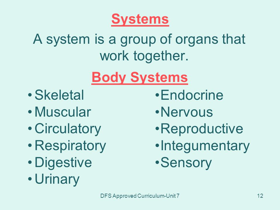 A system is a group of organs that work together.