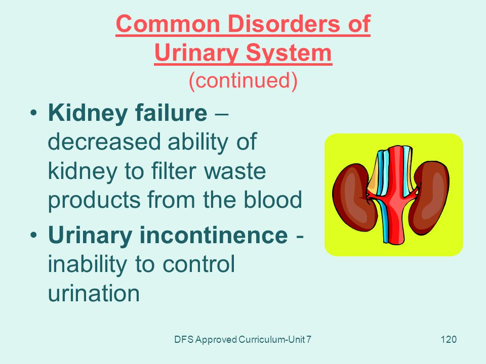 Common Disorders of Urinary System (continued)