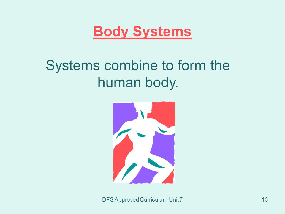 Systems combine to form the human body.
