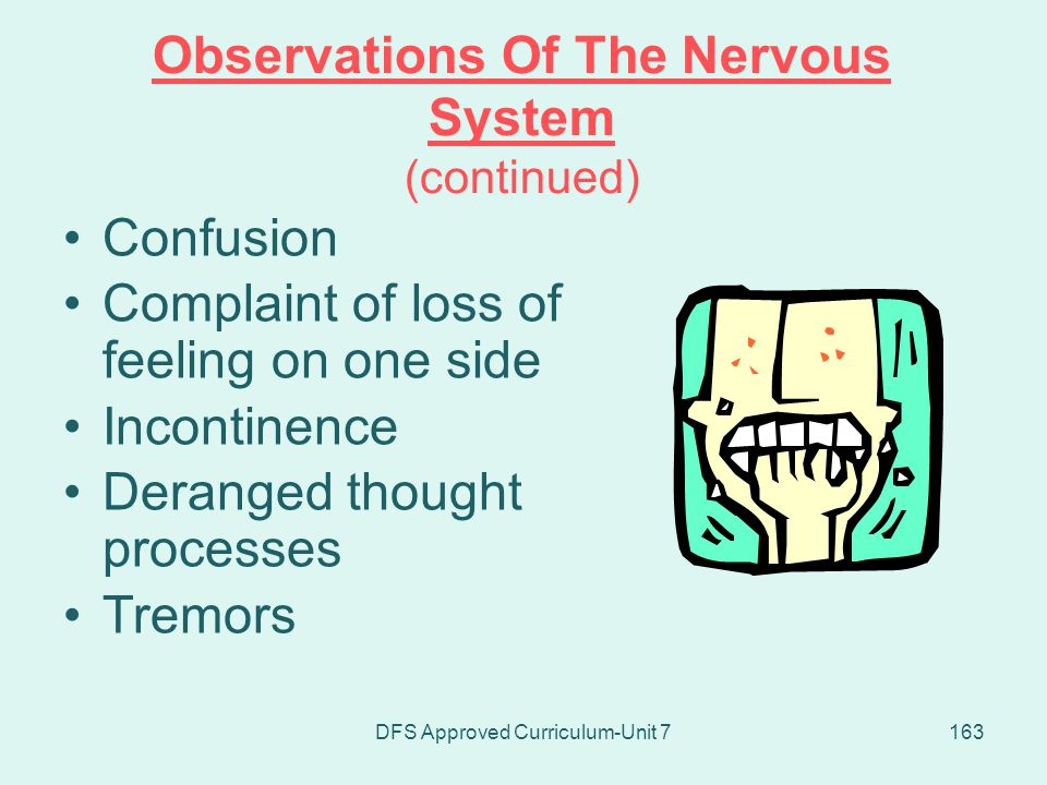 Observations Of The Nervous System (continued)