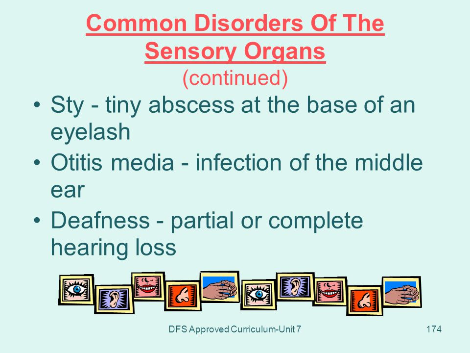 Common Disorders Of The Sensory Organs (continued)