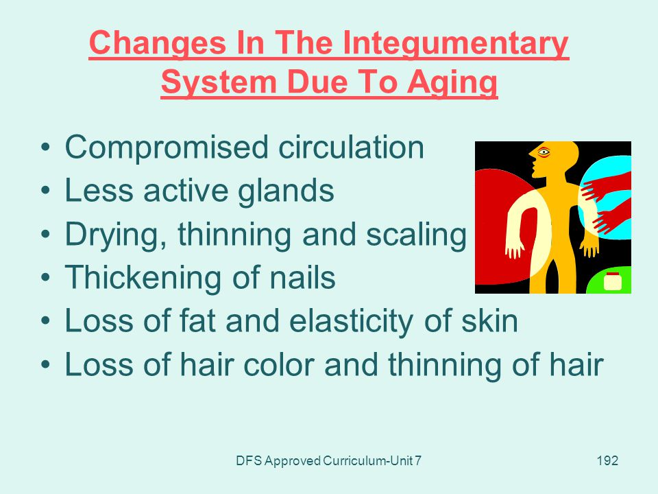 Changes In The Integumentary System Due To Aging