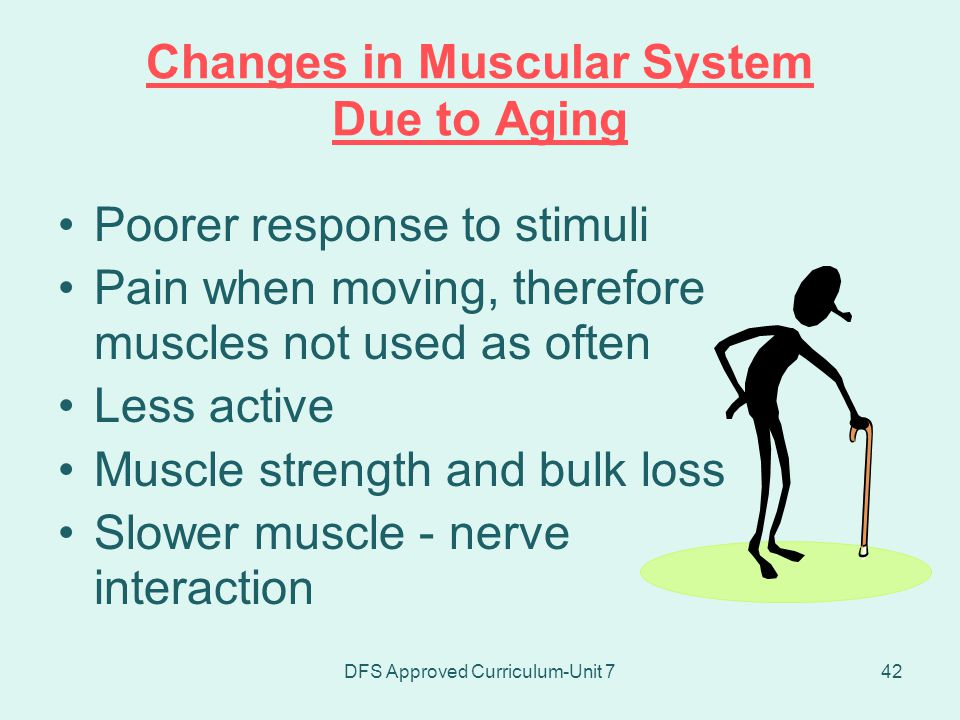 Changes in Muscular System Due to Aging