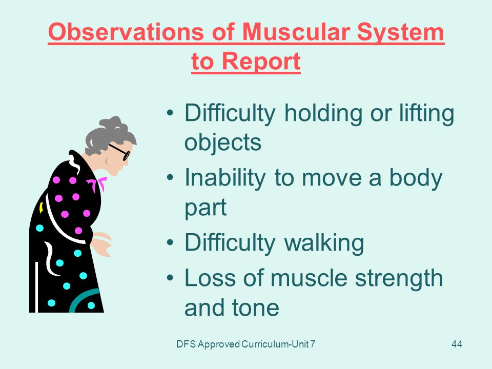 Observations of Muscular System to Report