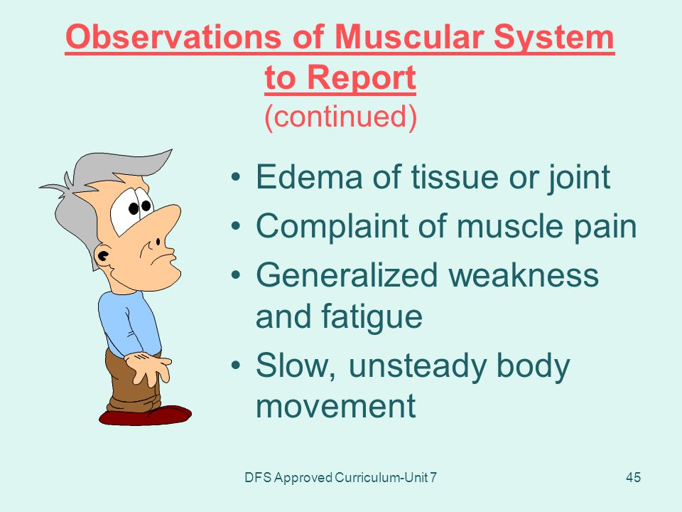 Observations of Muscular System to Report (continued)