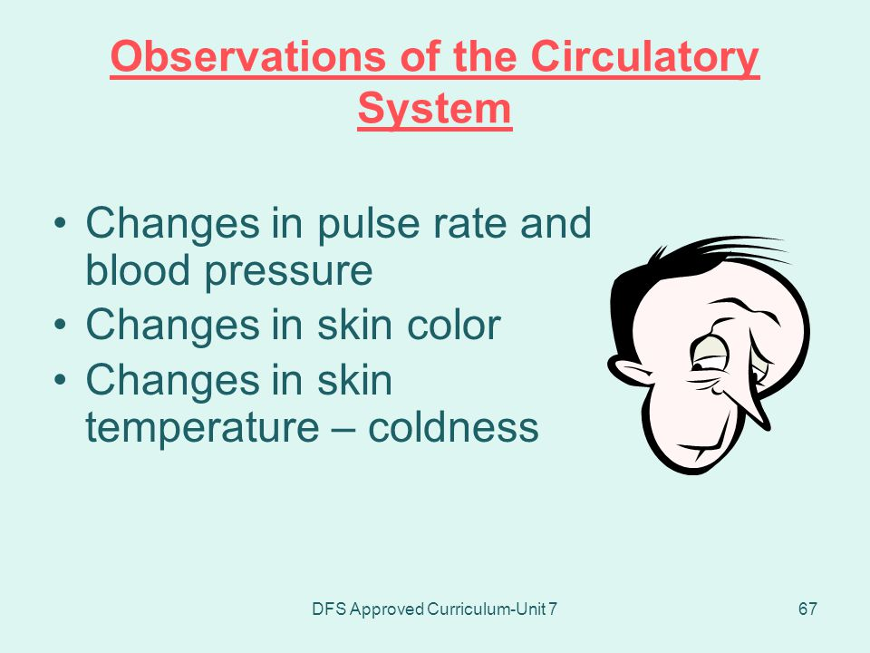 Observations of the Circulatory System