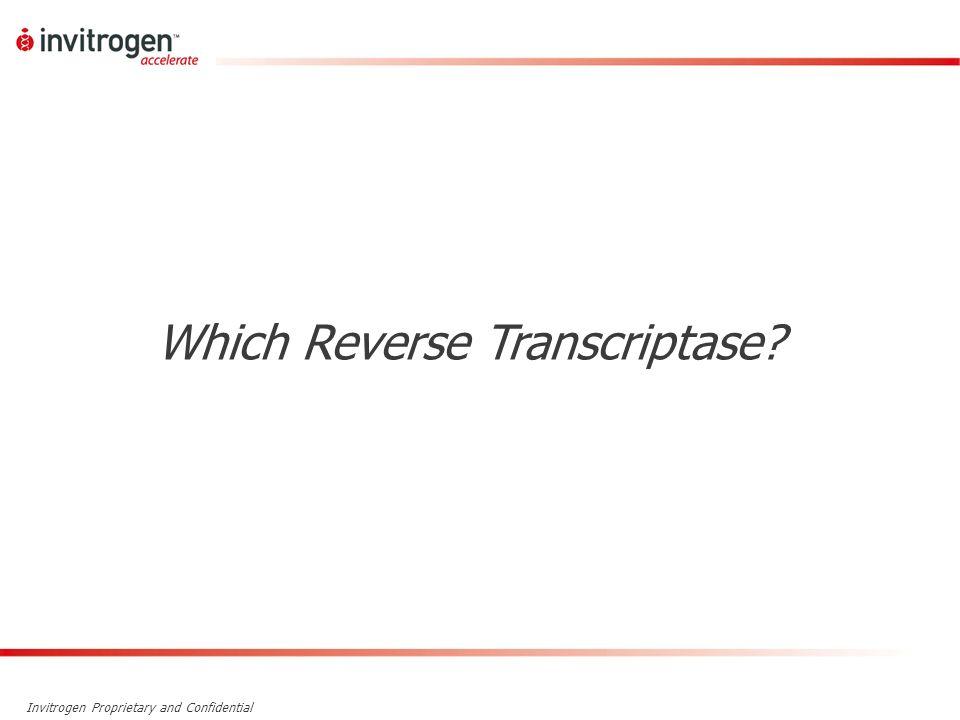 Which Reverse Transcriptase