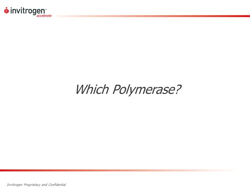 Which Polymerase