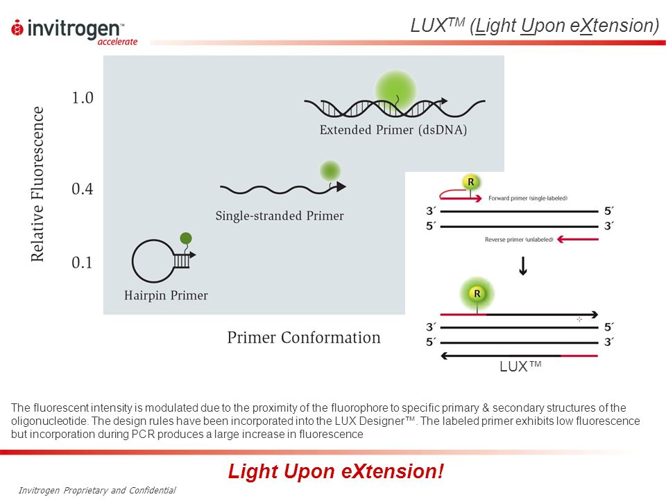 Light Upon eXtension! LUXTM (Light Upon eXtension) LUX™