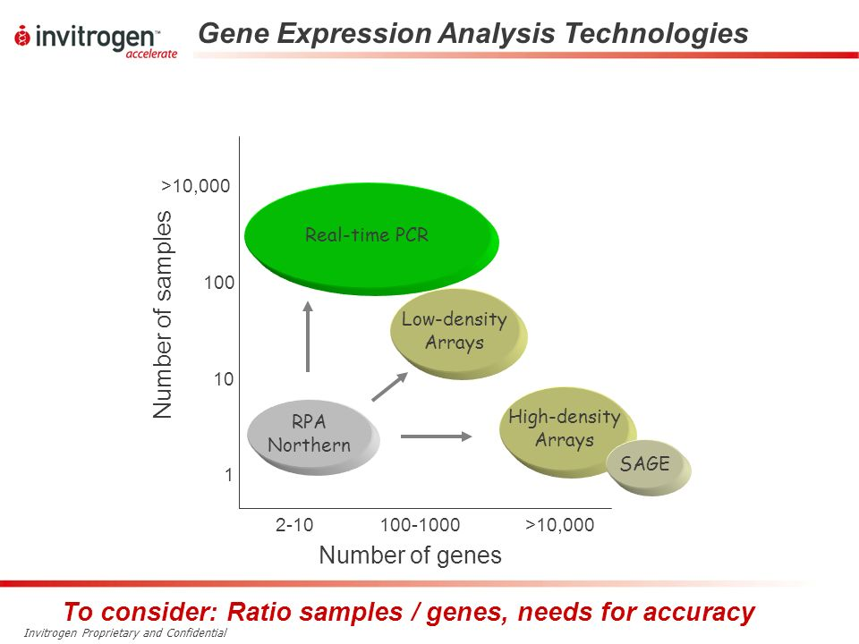 Gene Expression Analysis Technologies