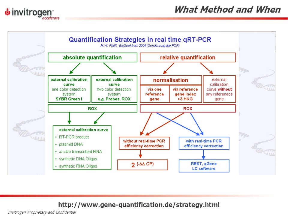 What Method and When http://www.gene-quantification.de/strategy.html