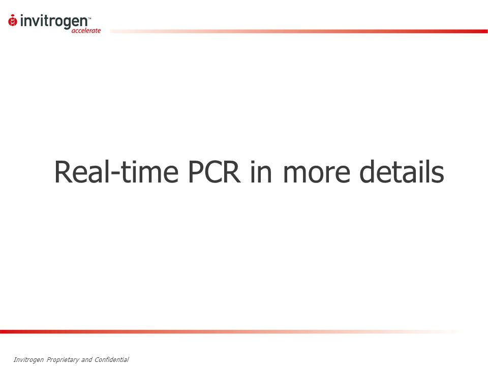Real-time PCR in more details