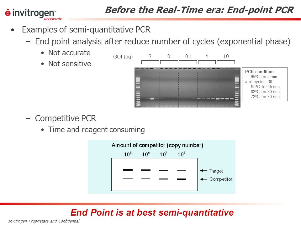 Before the Real-Time era: End-point PCR