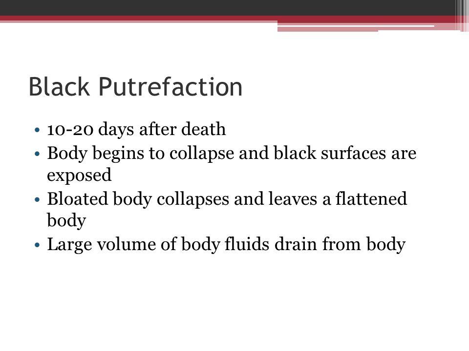 Black Putrefaction 10-20 days after death