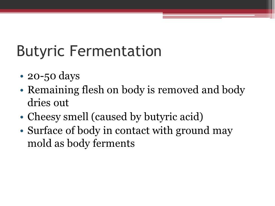 Butyric Fermentation 20-50 days