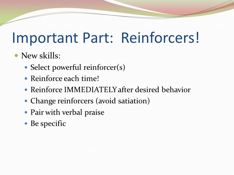 Important Part: Reinforcers!