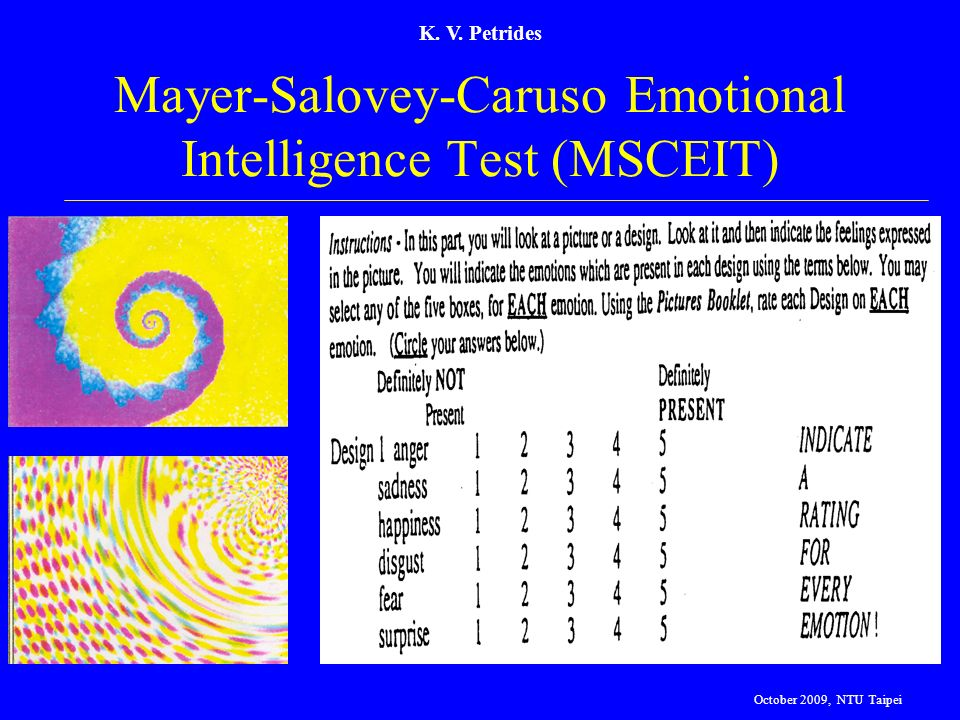 Mayer-Salovey-Caruso Emotional Intelligence Test (MSCEIT)