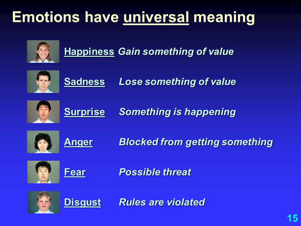 Emotions have universal meaning