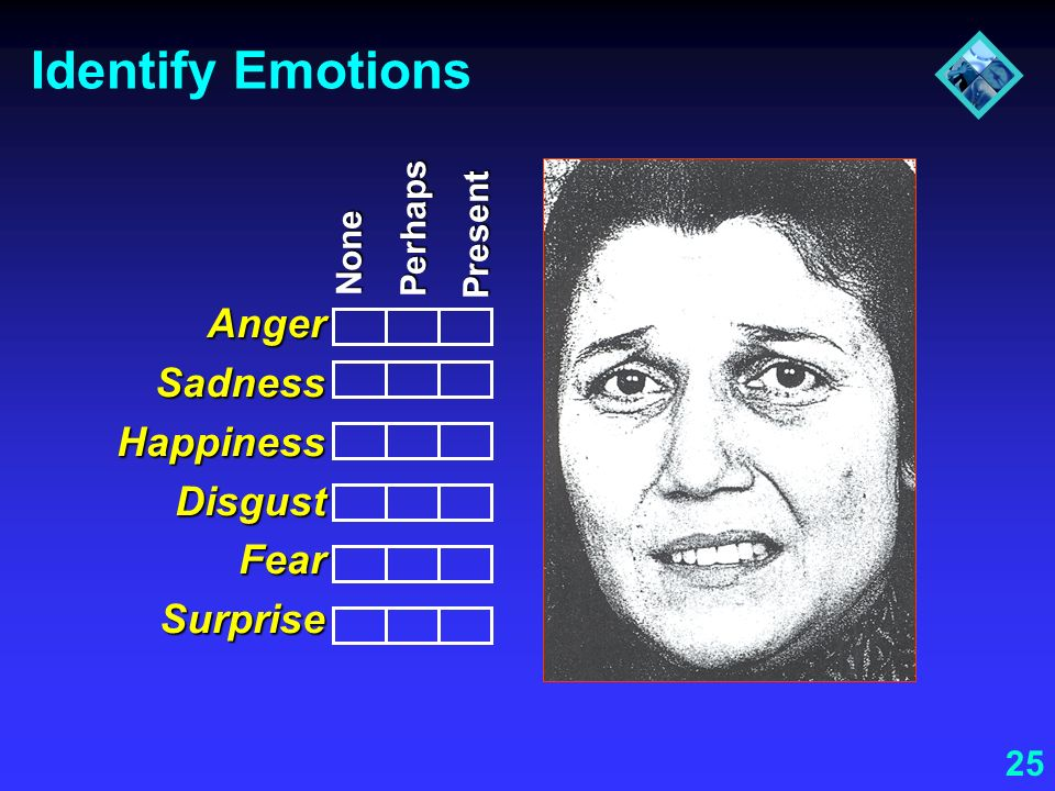 Identify Emotions Anger Sadness Happiness Disgust Fear Surprise