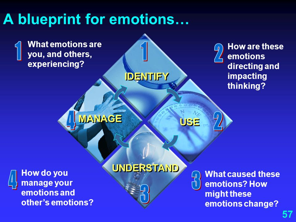 A blueprint for emotions…