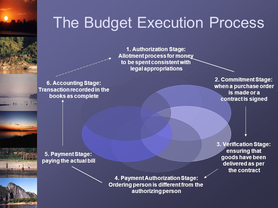 The Budget Execution Process