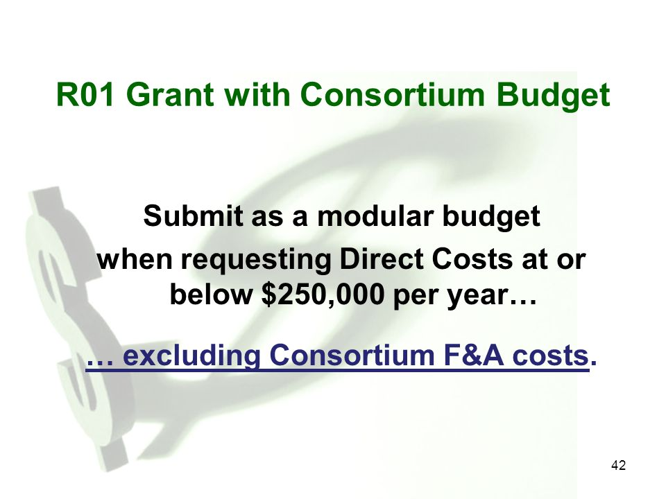 R01 Grant with Consortium Budget