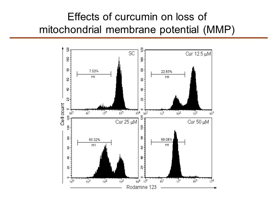 Effects of curcumin on loss of mitochondrial membrane potential (MMP)