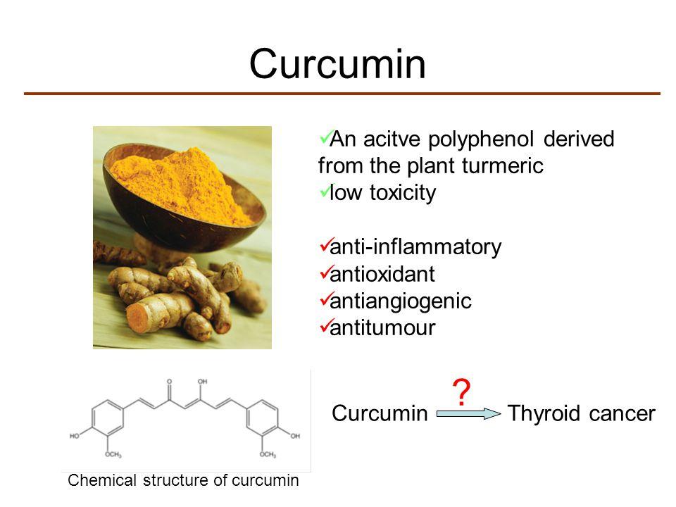 Curcumin An acitve polyphenol derived from the plant turmeric