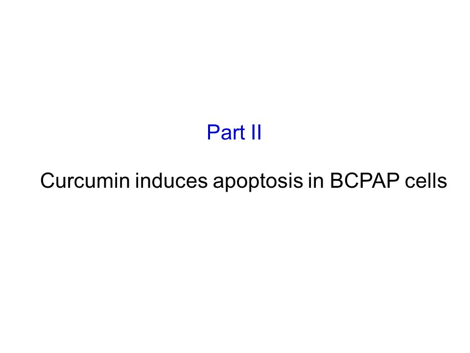 Part II Curcumin induces apoptosis in BCPAP cells