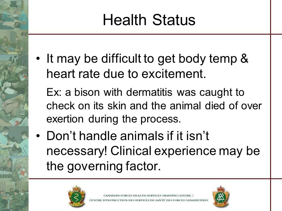 Health Status It may be difficult to get body temp & heart rate due to excitement.